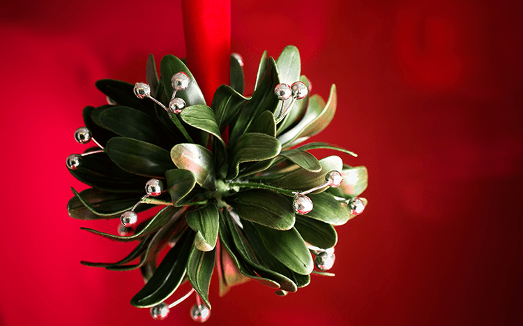 where to hang the mistletoe