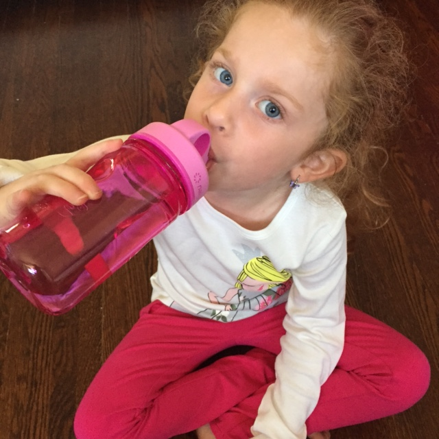 Pink Nalgene Water Bottle
