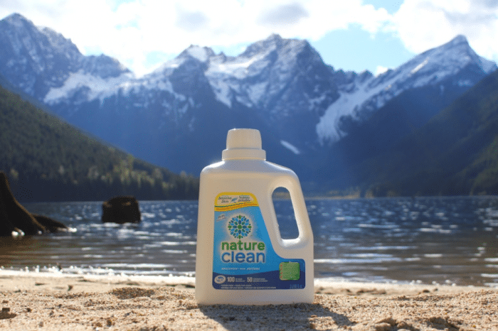 Nature Clean Laundry Detergent