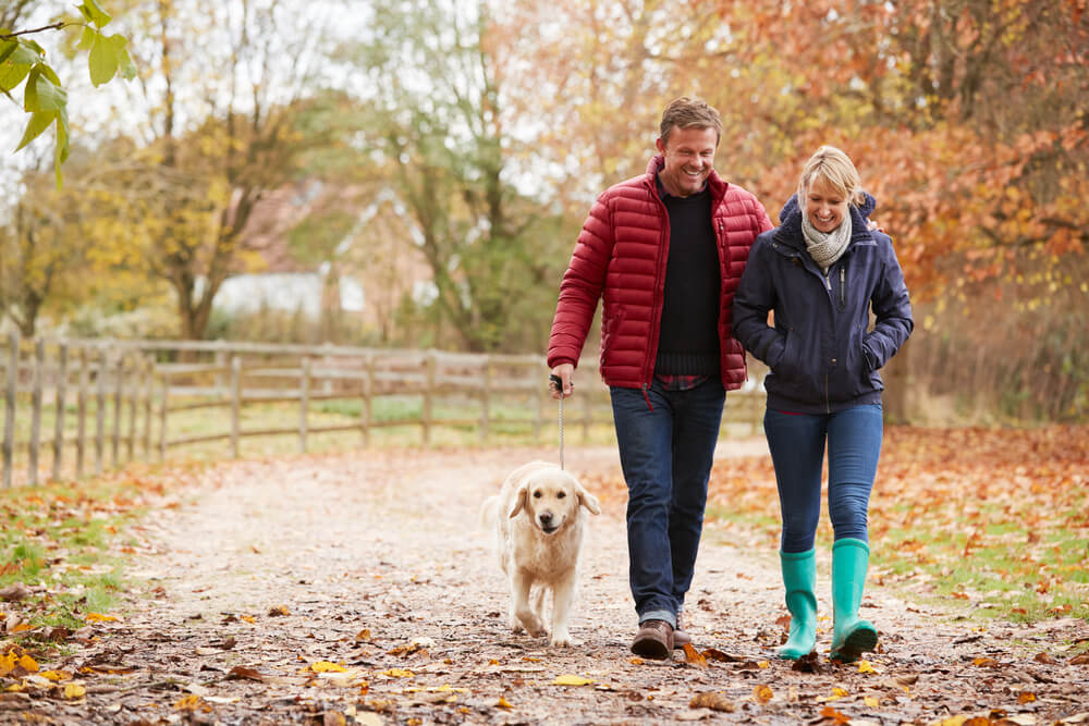 mature couple walking their dog