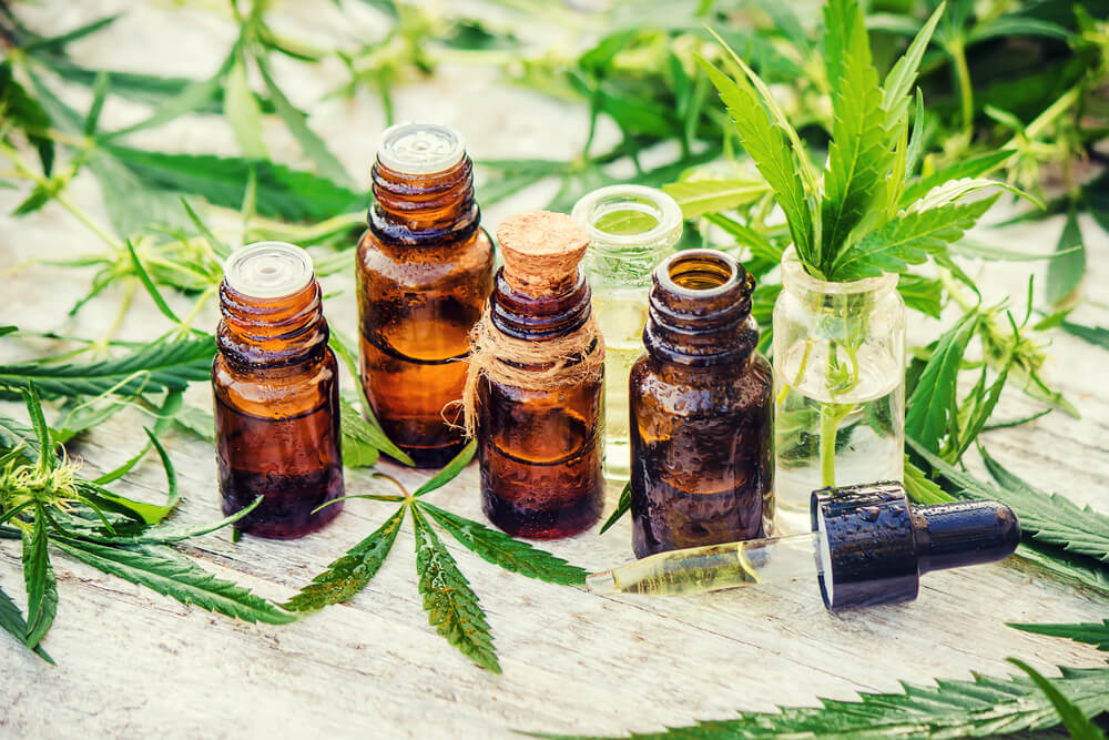 Essential oil bottles surrounded by cannabis plants