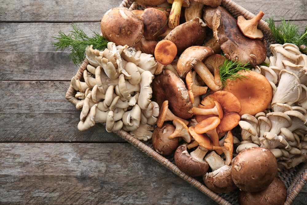 Basket of a variety of Mushrooms